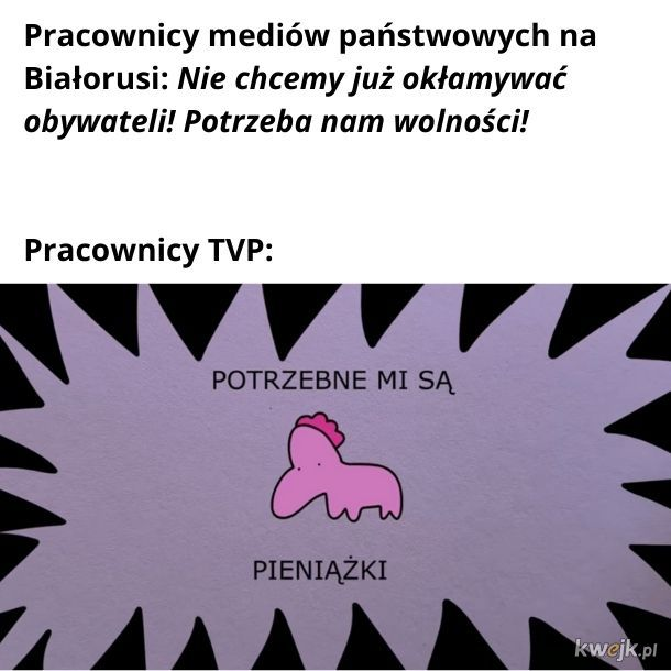 Kuce z TVP