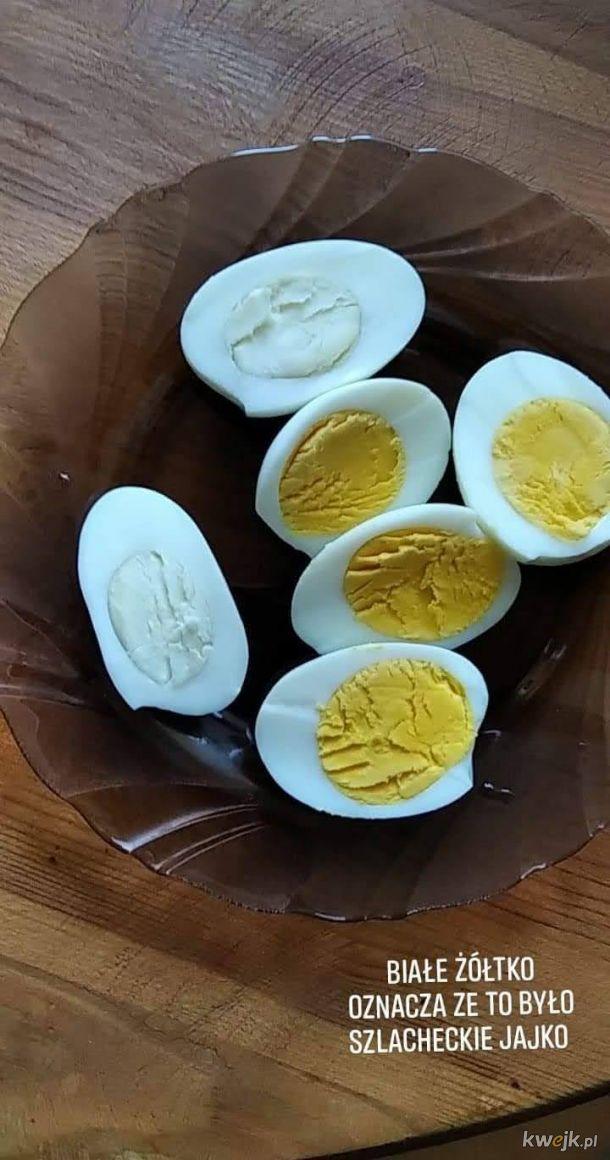 Białe Żółtko Jajka