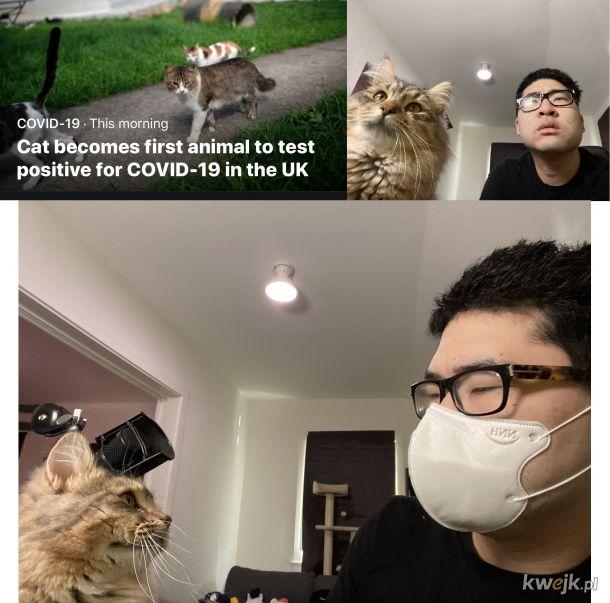 Właściciel kotów mają przerąbane xD