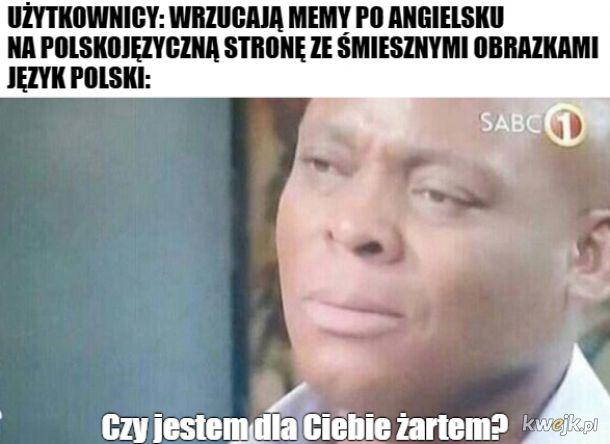 Polacy nie gęsi, swoje memy mają