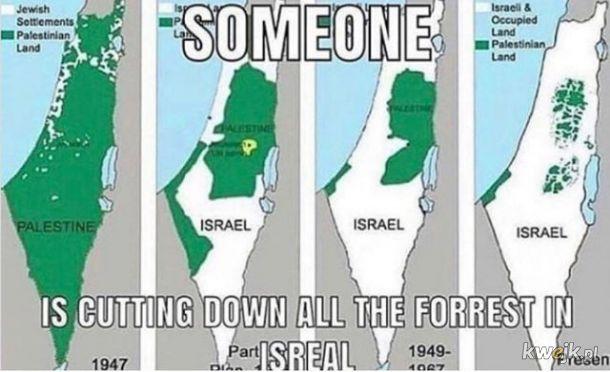 Ktoś wycina lasy w Izraelu!