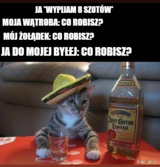 Po alkoholu