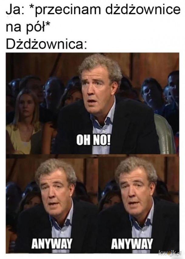 Dżdżownica