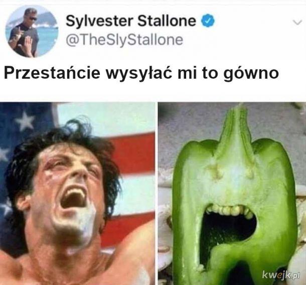 Paprykarz Stalone