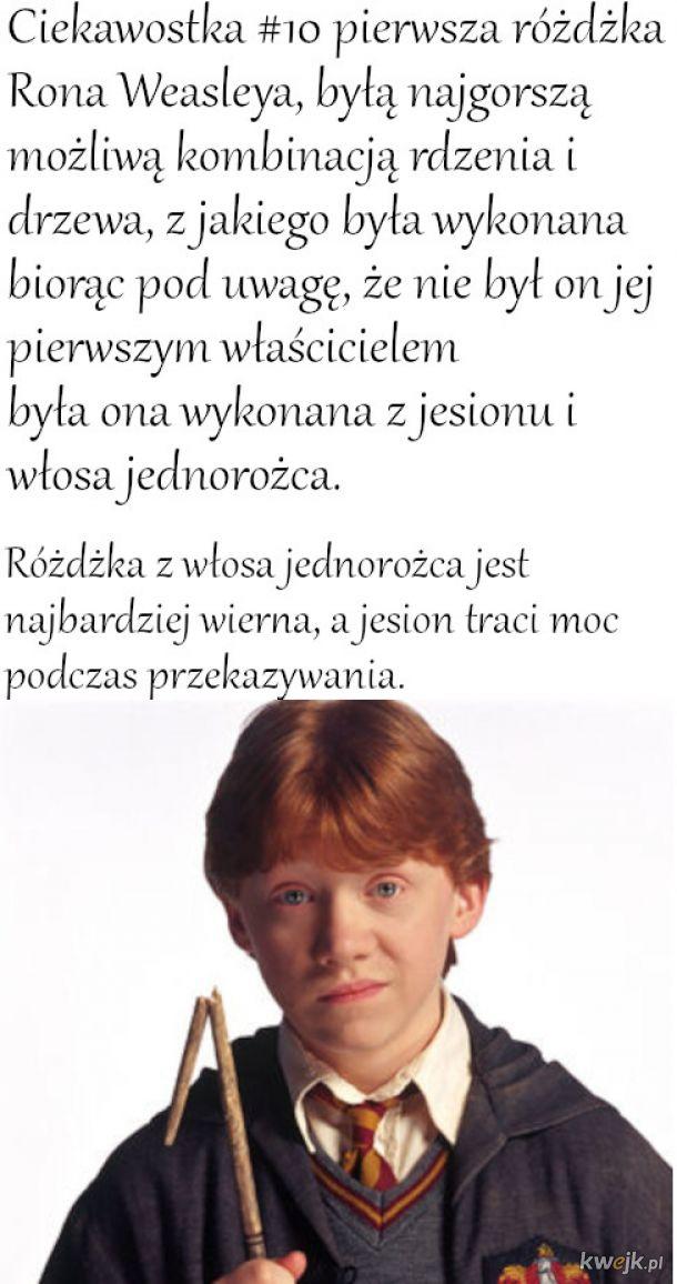 Ciekawostka #9 Różdżka Rona