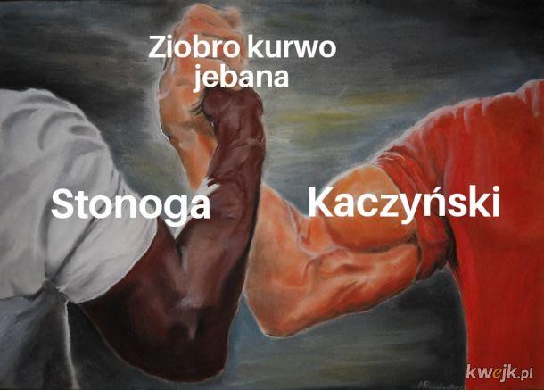 Ziobro ty k***o