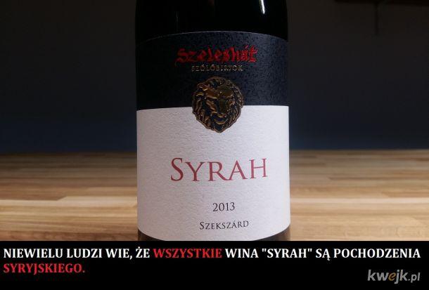 Wino Syrah pochodzenie