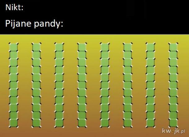 Pandy, bo wygląda jak bambusy
