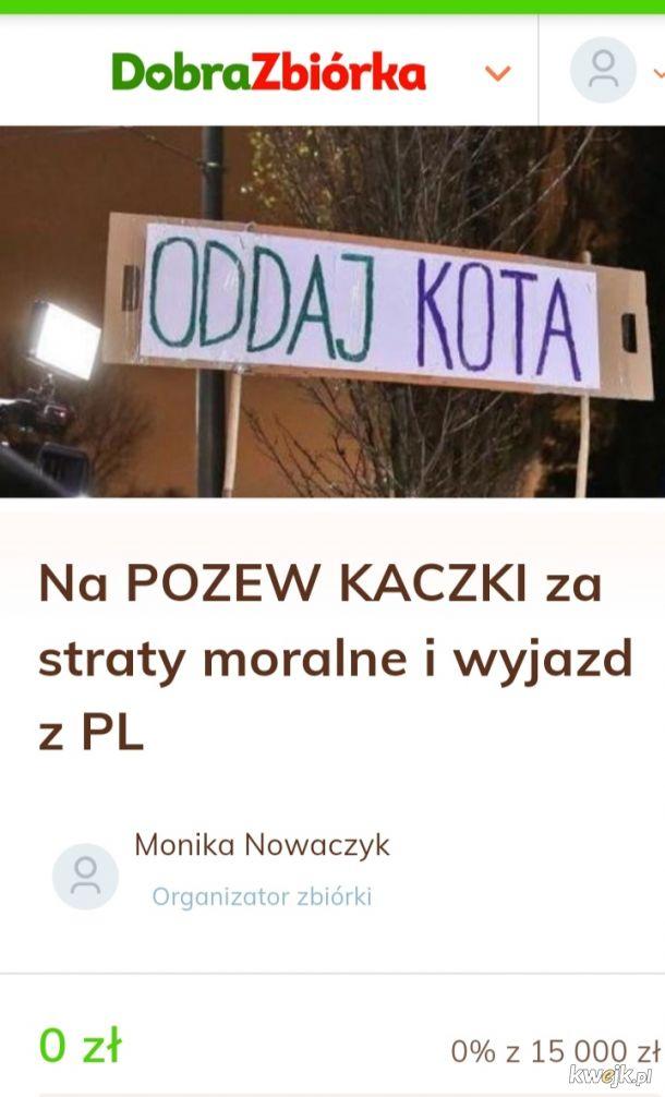 https://www.dobrazbiorka.pl/dsav0gtgi4