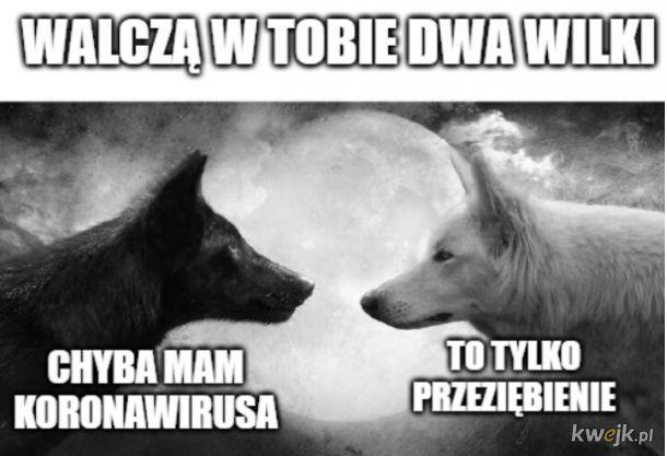 Walczą w tobie dwa wilki