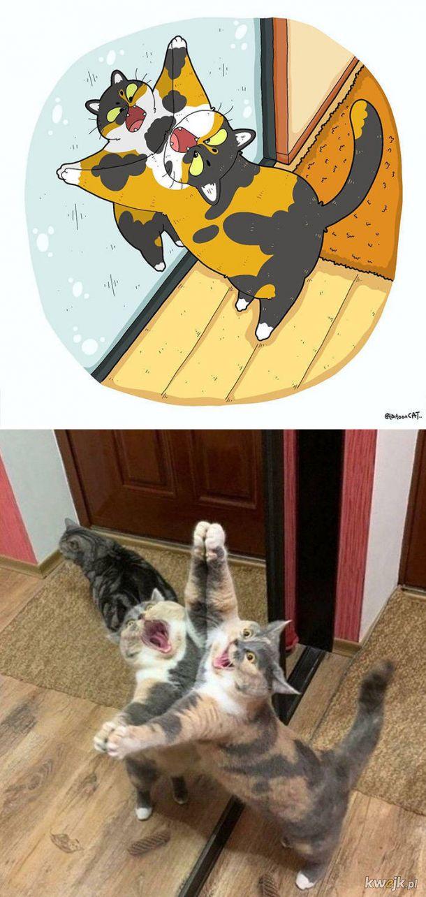Najsłynniejsze internetowe kotki zilustrowane przez Tactooncat
