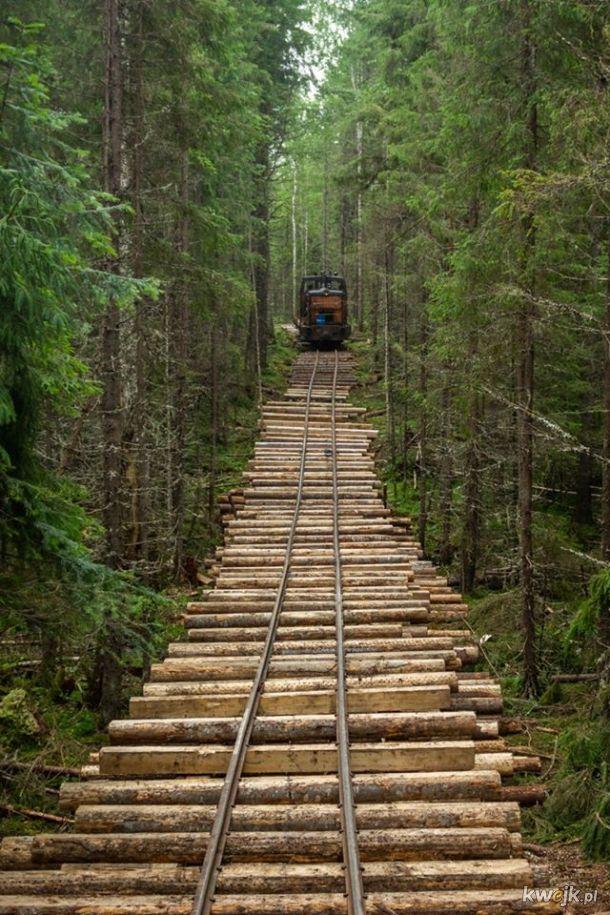 Kolej leśna w Rosji