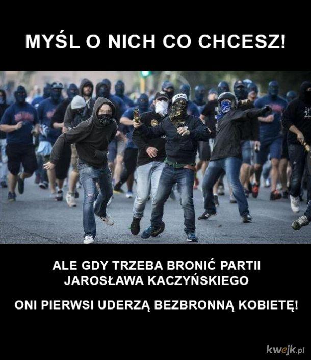 Partyjne Tituszki Jarosława Kaczyńskiego