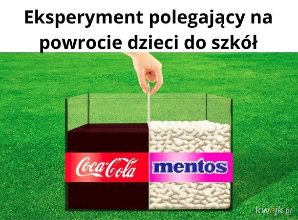 Eksperyment