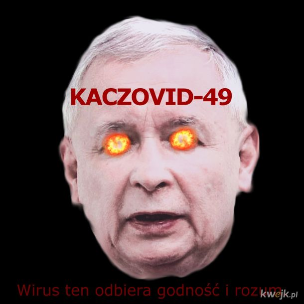 KACZOVID-49