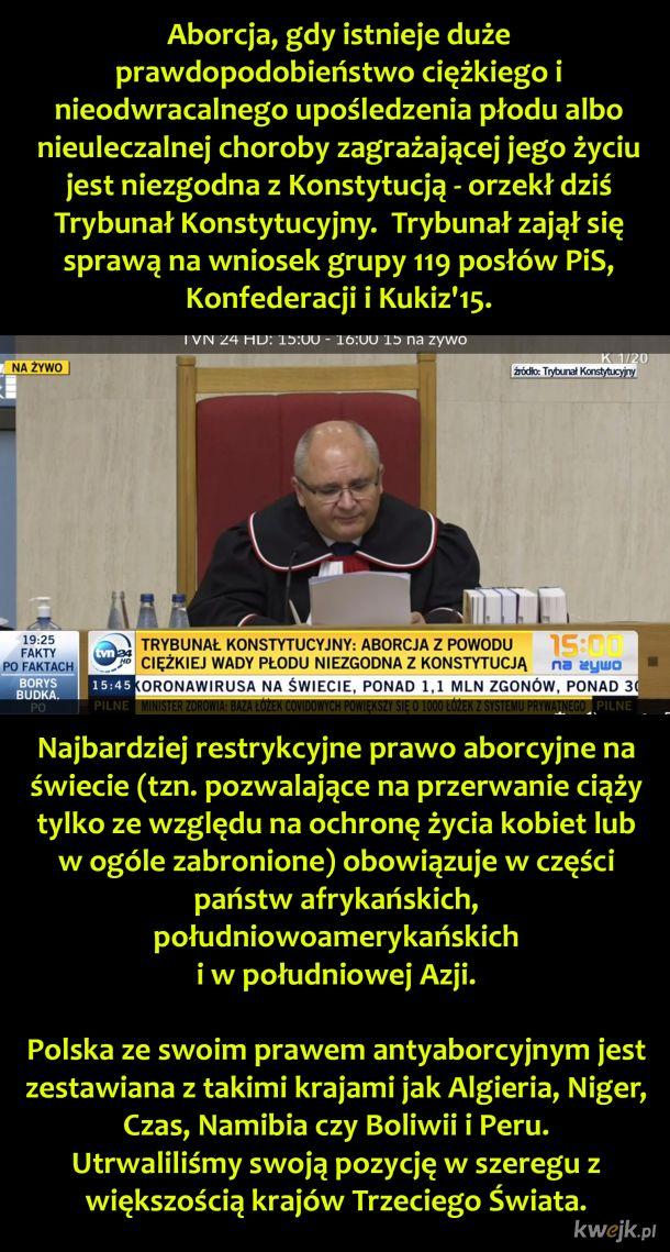Quo vadis Polsko