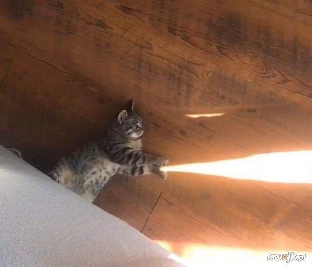 Światło dobroci