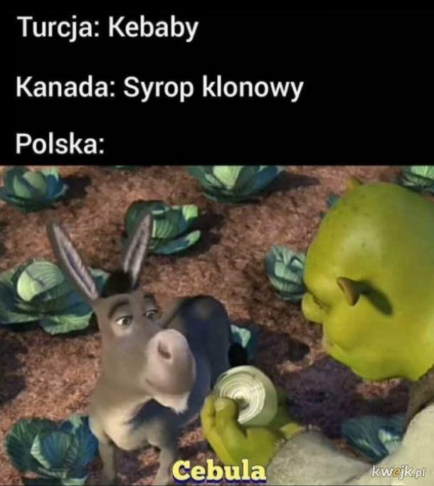 Polska duma