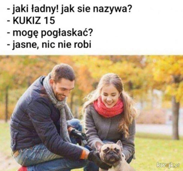 Kukiz15
