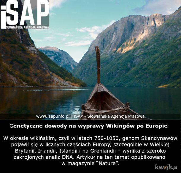 Wyprawy Wikingów - więcej info: isap.info.pl/2020/09/22/badanie-genetyczne-dowody-na-wyprawy-wikingow-po-europie/