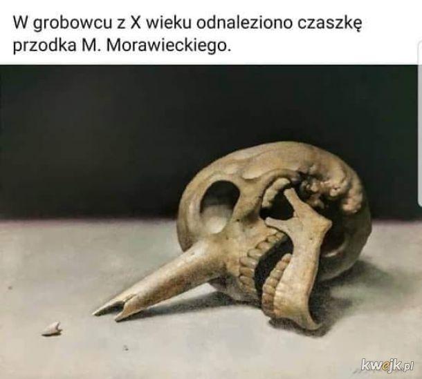 Pinokio Morawiecki