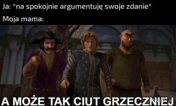 Argumentacja