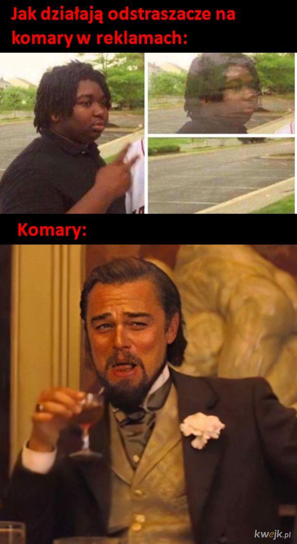 Komary