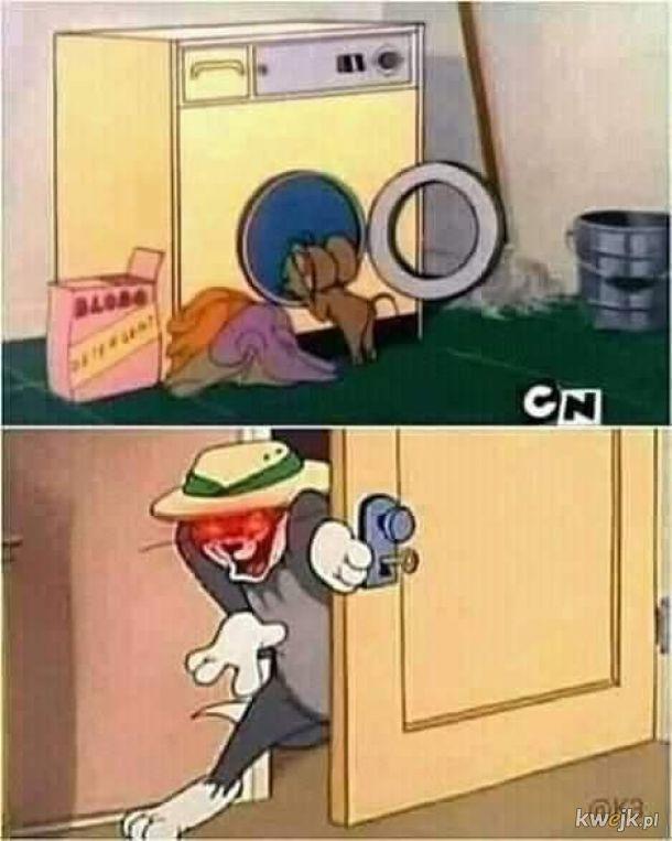 stepujący Jerry