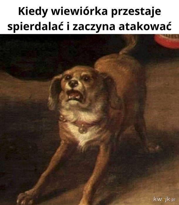 *psi zawał*