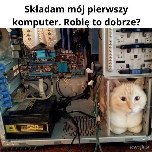 A jakiego kota Wy używacie? Nie przegrzewa się Wam?