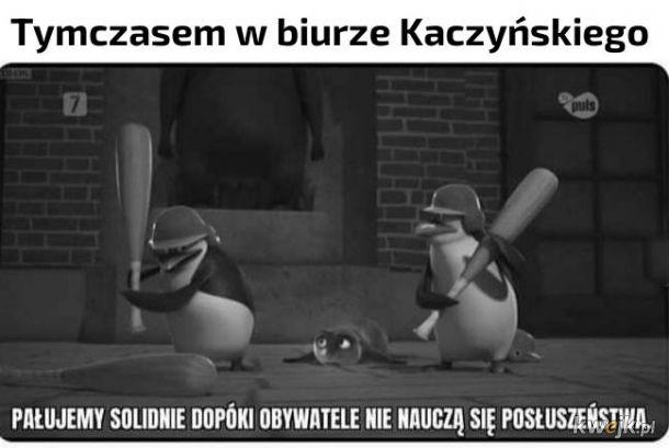 Biuro Kaczyńskiego