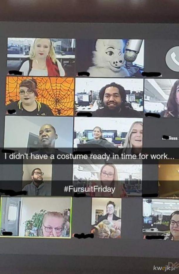 Takie, takie coś jak #FursuitFriday istnieje