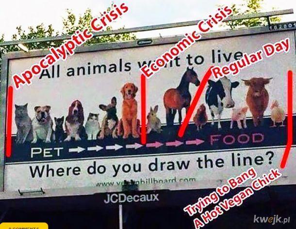 Zaliczanie vege lasek: Gdzie narysujesz linię ? Proste!