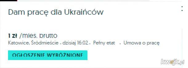 Praca dla Ukraińców