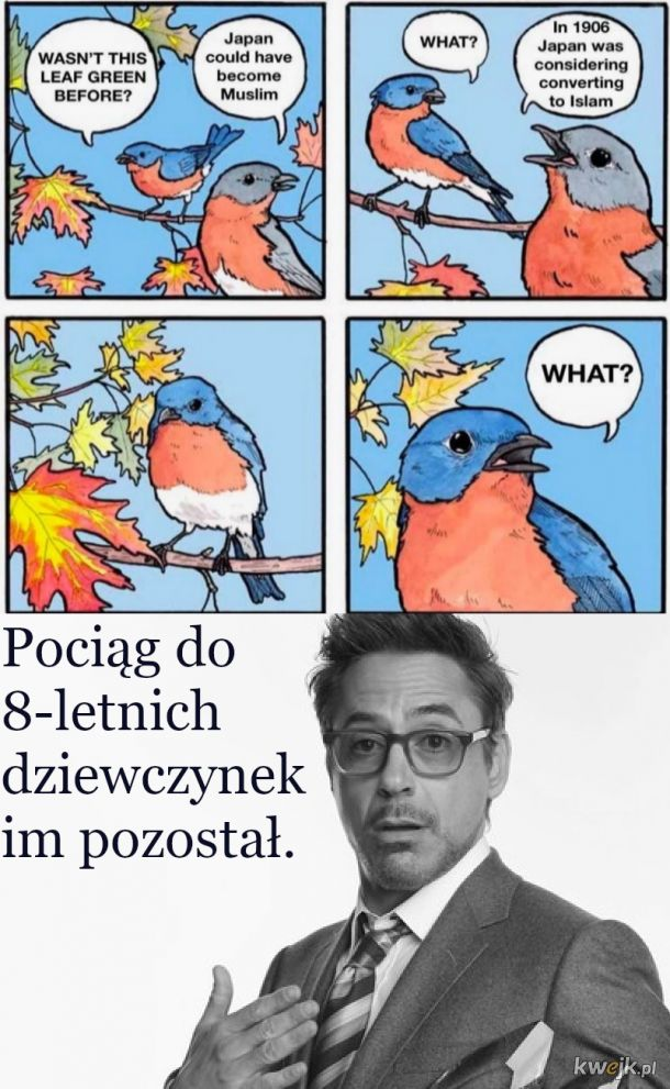 J*ponia