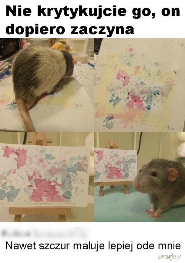 Malujący szczur