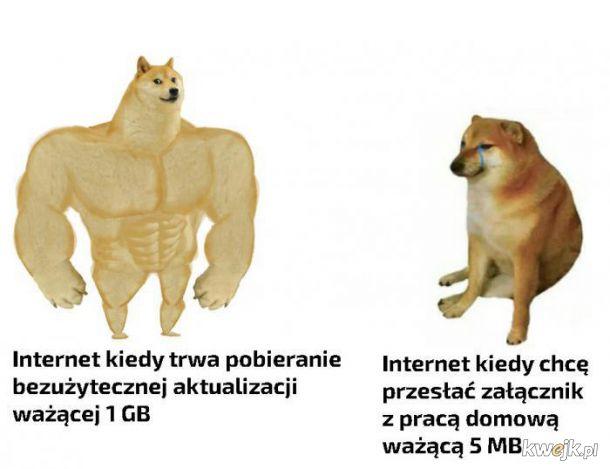 Prędkość internetu