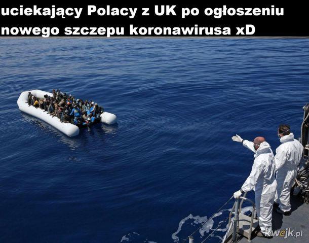Polacy z UK