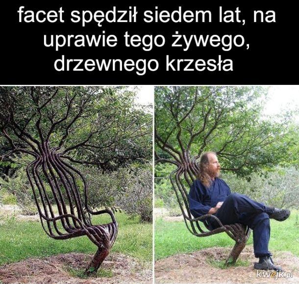 W naturze siedzisko