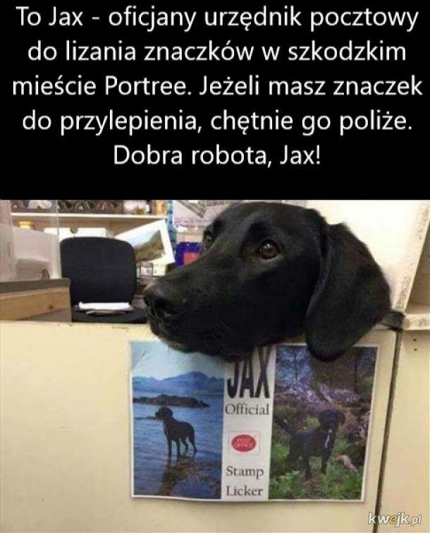 Gdyby Poczta Polska miała takich pracowników, świat byłby lepszy