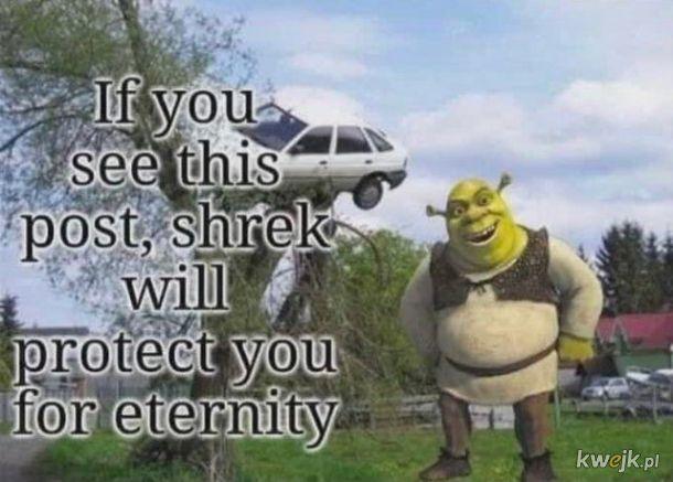 I jak tu nie uwielbiać Shreka