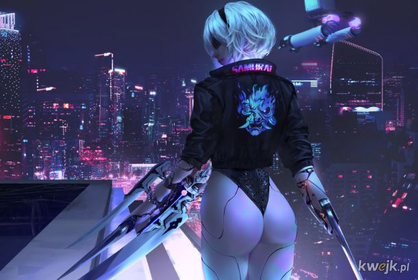 Cyber 2B