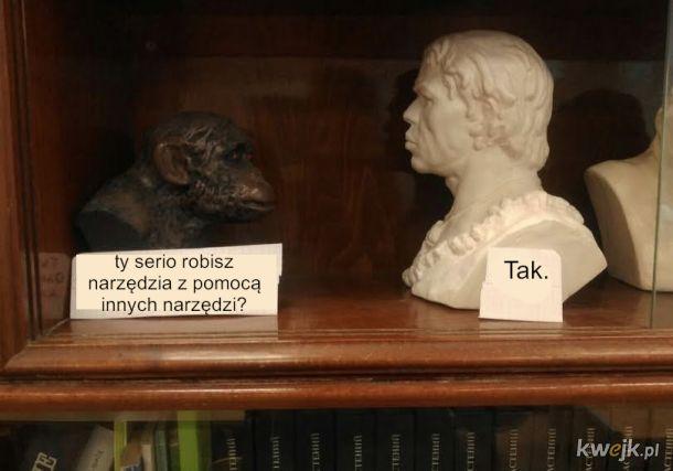 Małpa i homosapiens