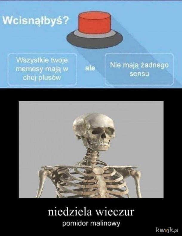 Tworzenie memesów
