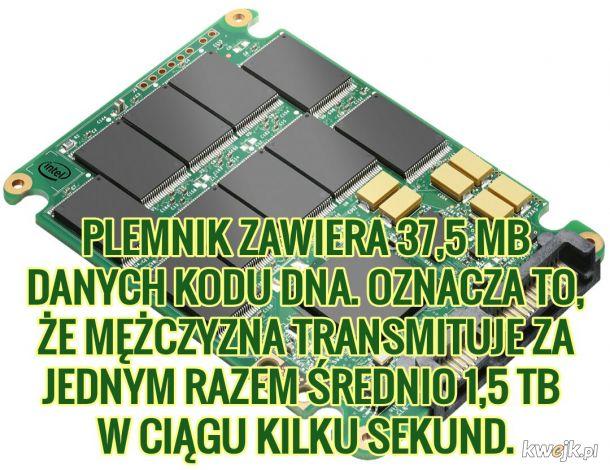 Stop niekontrolowanej utracie danych!