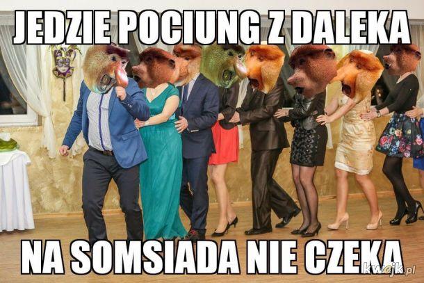 Polacy na weselu