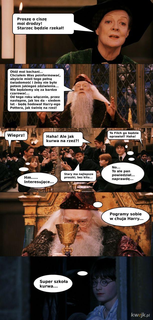 Dumbledore objawia plan