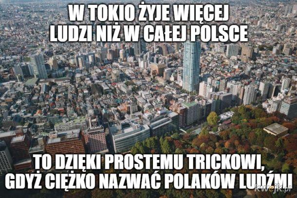 Tokio to duże miasto