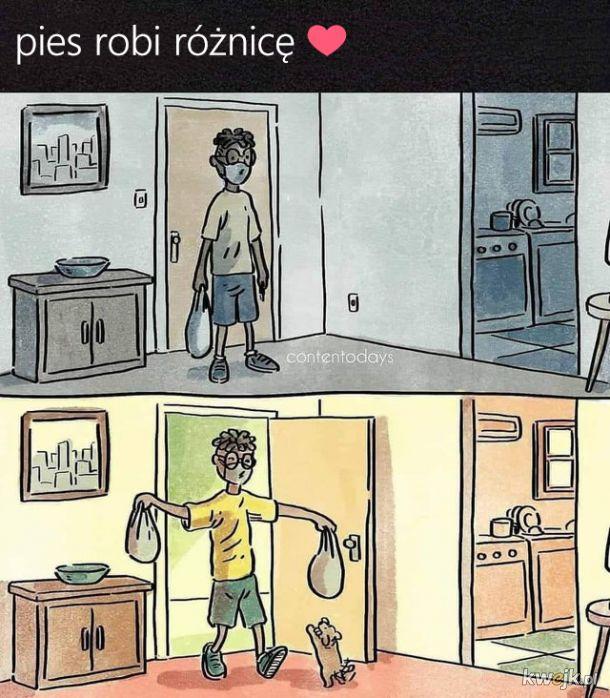 Pozytywne memy, obrazek 4