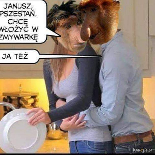 Rumantyczny Janusz